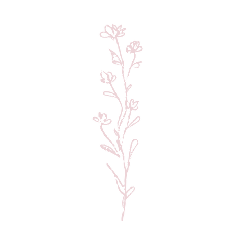 flower 11 pink.png