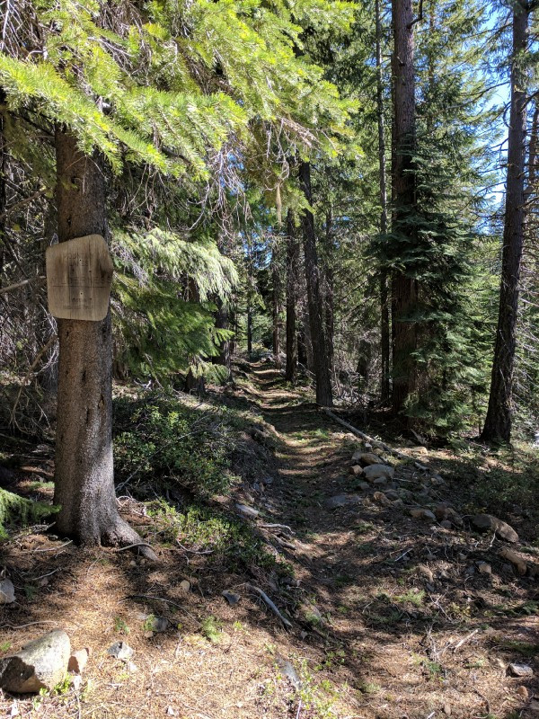 The exact spot that I stepped out onto the trail from the forest.