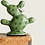 Thumbnail: Cactus Jewelry/Ring holder
