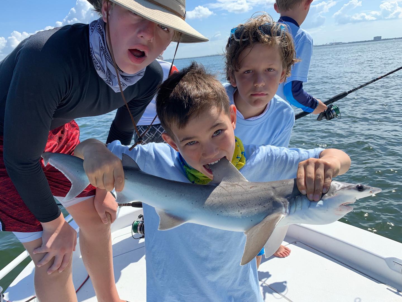 Tampa Florida Shark Fishing