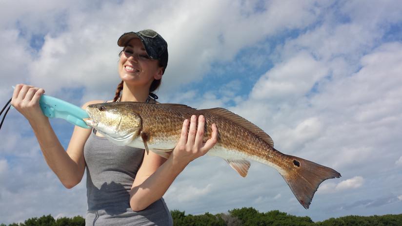 Beautiful Red in Tampa Florida
