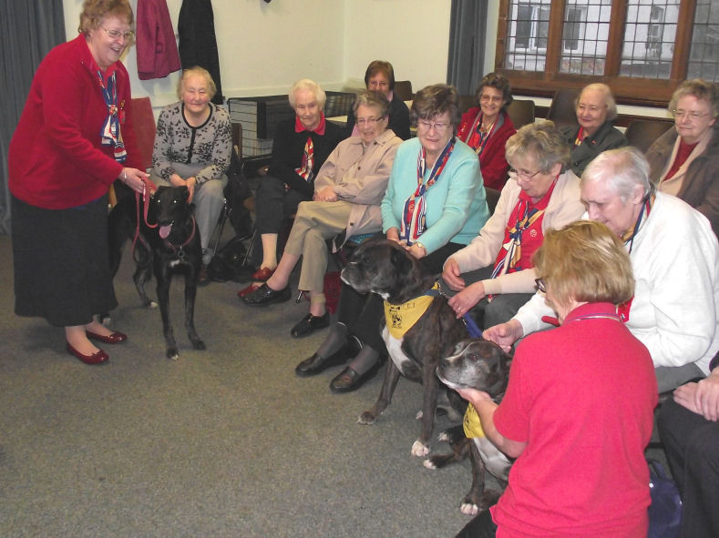 Guild Ladies Get Some Therapet ~ Perthshire- Resized.jpg
