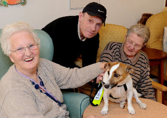 Paws for thought as Sparky takes on pet therapy role