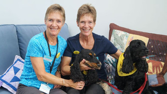 Meet the Therapet dogs bringing joy to hospice patients