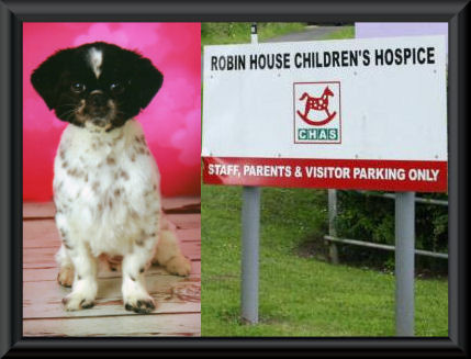 Kerri visits Robin House With Frame.jpg