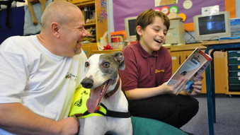 School dog schemes have huge impact - if done properly