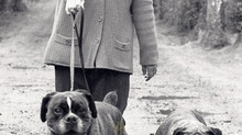 """""""THERAPET"""" managed by Canine Concern Scotland Trust celebrates 32years of volunteering service in Sc"""