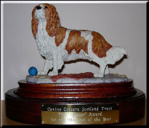 Therapet of the Year TrophyB.jpg