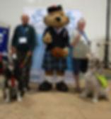 Bear Help for Heros RAF 2017.jpg