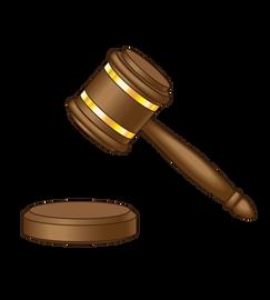 Legal Graphics/Illustration