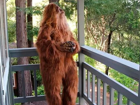 Pros and Cons of Going to the Movies with a Bigfoot