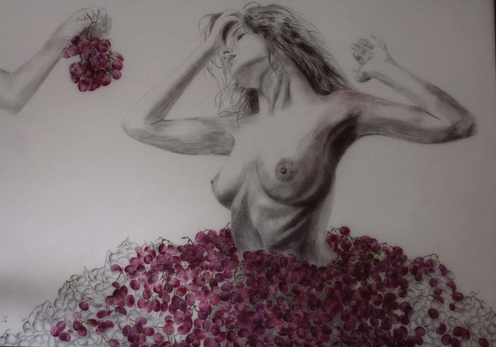 ענבים