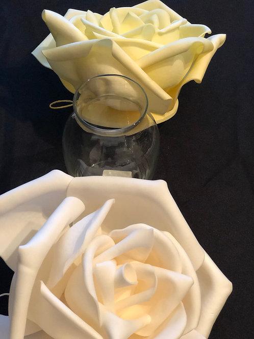 Round Belly Glass Vase