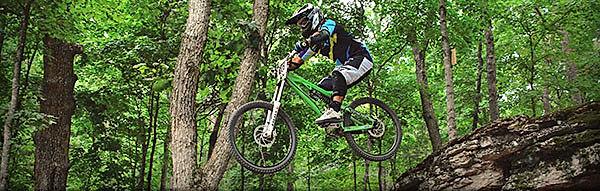Mountian Biker