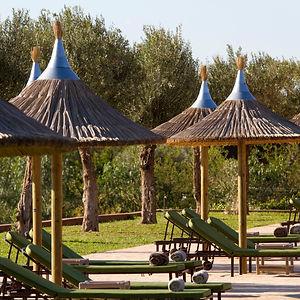 Palais-Paysan-transat-parasols.jpeg