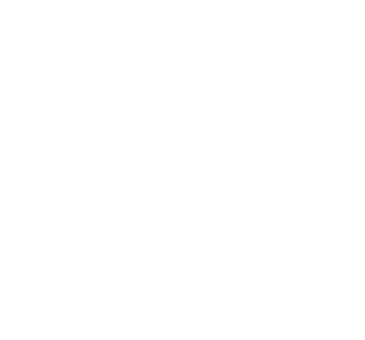 Horse-Icon-50.png