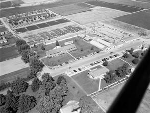 Irrigation Experiment Station 1958