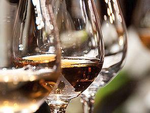 Elegant Wine Tours