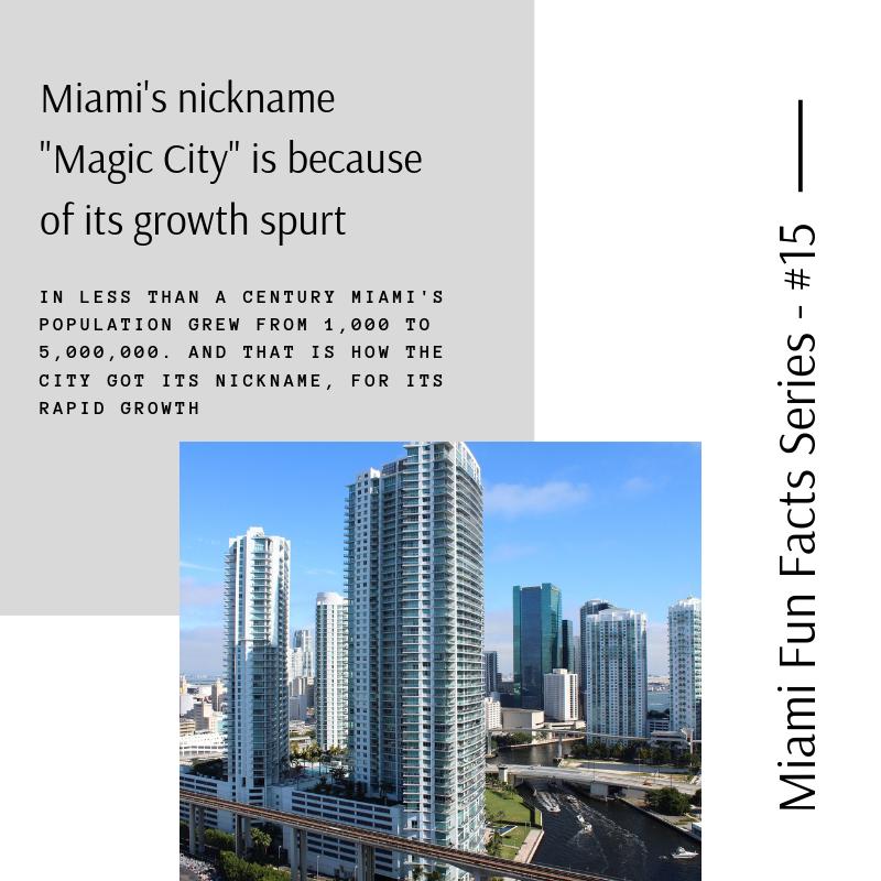 Miami-Writing-Services