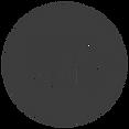 DSYS - Logo 4 - Transparent cropped.png