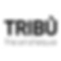 Höttges-Tribu-Logo.png