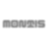 Montis bei Höttges