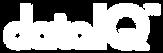 dataIQ_Logo.png
