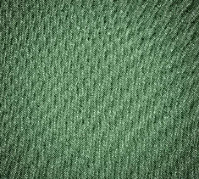 bluegreenbook.jpg
