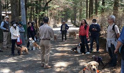 Forest Renger Dog.JPG