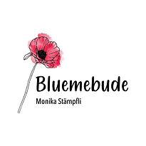 Bluemebude.jpeg