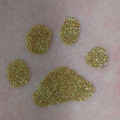 Glitter Tattoo