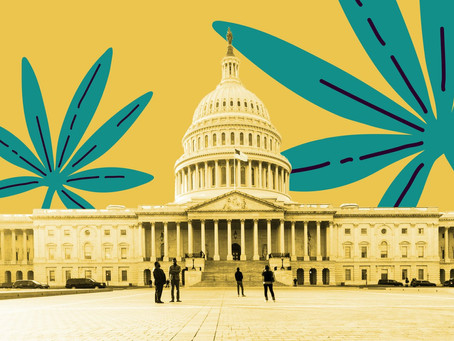 Federal Legalization MORE Act Comments