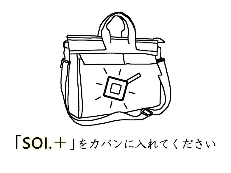 17_SOI_plus_icon_handbag.jpg