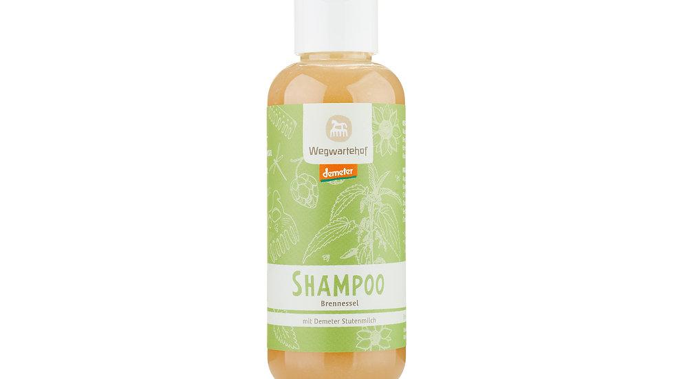 Shampoo Brennessel