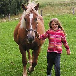 pferd_fuehren.jpg