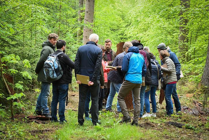 WaldFührung Führunskräfte Weiterbildung