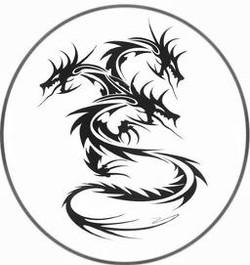 Dragon Shrimp Chips