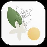 OLDAYS_App_Icon_1000x1000_01.png