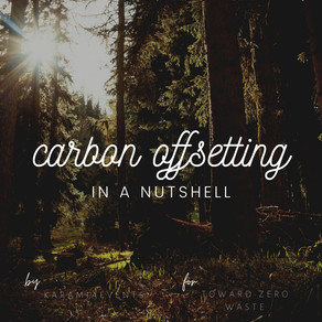 Carbon Offsetting: In a Nutshell