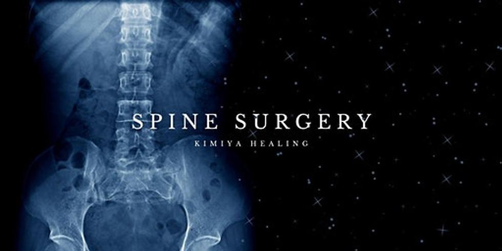 Group Alchemy - Spine Surgery