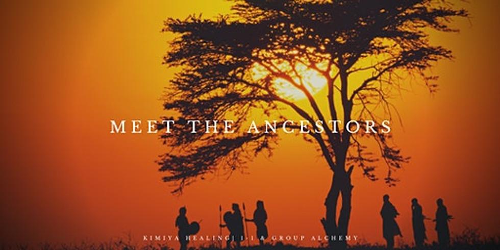Meet the Ancestors