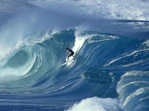 Surfez sur la vague Richesses Humaines RH by Mkomm !
