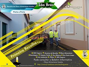 Primeira_Recolha_1_-_Cópia.png