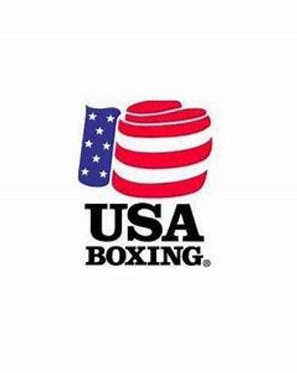 USA BOXING LOGO COLOR.jpg