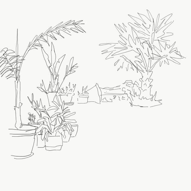10 April - 10 min sketch from image.jpg
