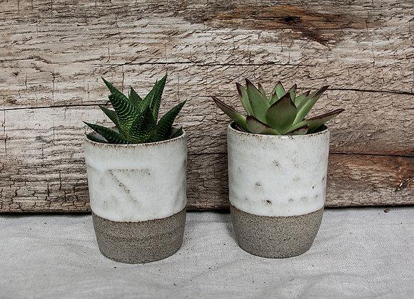 Blumentopf oder Kaffeebecher