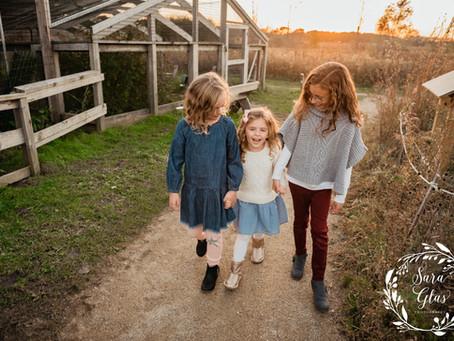 Adamo Family | Lake County IL Family Photographer