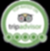 TripAdvisor-Logo-Plain.png
