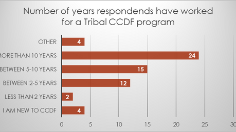 What are Tribal CCDF T/TA Needs?