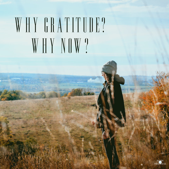 Why Gratitude? Why Now?